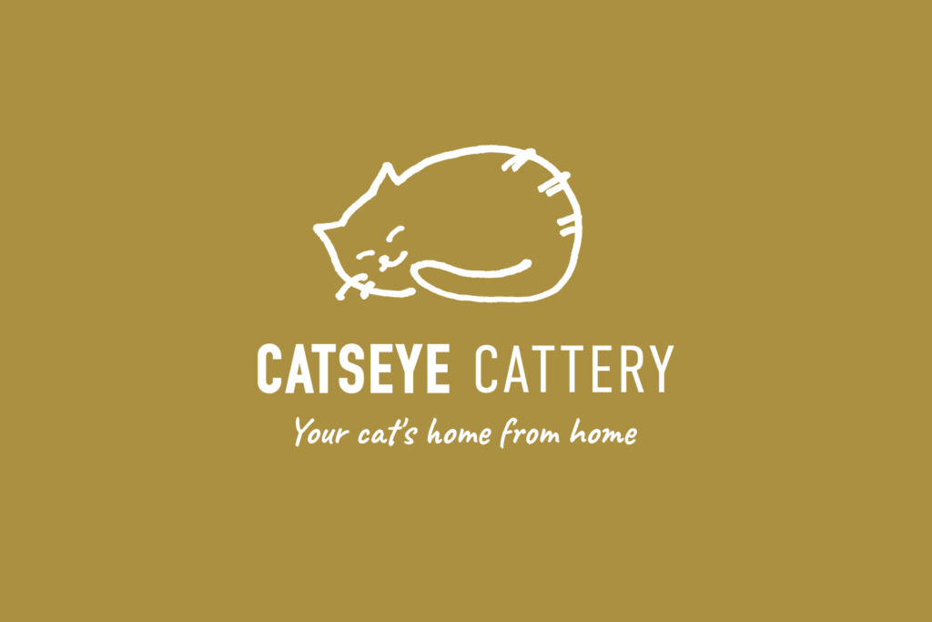New logo for Catseye Cattery web design project